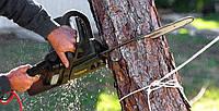 Спилить дерево. Выкорчевать пень. Скосить траву