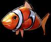 Летающая рыба Клоун на радиоуправлении, Надувная летающая рыбка Clownfish