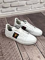 Кроссовки мужские Gucci D3267 белые, фото 1