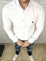 Рубашка мужская Polo Ralph Lauren D3230 белая, фото 1