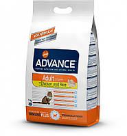 Advance Cat CHIСKEN & RICE - корм для взрослых котов и кошек (курица/рис)