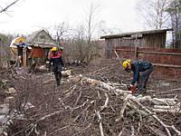 Расчистка садовых и дачных участков
