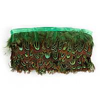 Перья декоративные фазана Салатовые на ленте 5 см/50 см