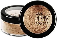 Рассыпчатая пудра Colour Intense Powder № 04