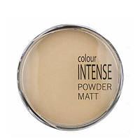Пудра компактная Colour Intense Powder Matt № 01