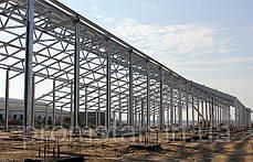 Построить коровник, птичник, зернохранилище, навесы строительство, фото 2