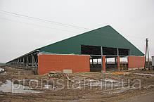 Построить коровник, птичник, зернохранилище, навесы строительство, фото 3