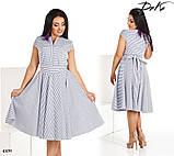 Платье короткий рукав расклешенное миди в полоску коттон 50,52,54,56, фото 2