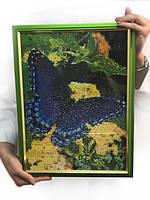 Готовая картина в технике алмазная вышивка «Бабочка»