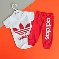 Комплект Adidas для малышей боди размер 3,9 мес