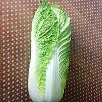 Семена пекинской капусты Билко F1 (2500 сем.)