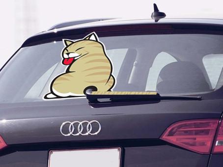 Наклейки на авто на заднее стекло  (минимальный заказ от 350 грн.)