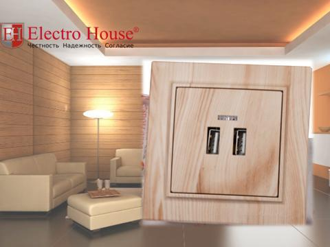 Розетка USB на два поста светлое дерево Enzo Electro House