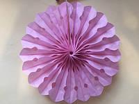Веерный круг бумажный из тишью 20 см. нежно-розовый, фото 1