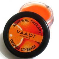 "Бальзам для губ ""Апельсин"" Vaadi Herbals, 6г"