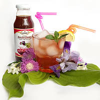 Фруктовый напиток «Frutti Berry» (яблоко, слива Анна Шпет) 0,3 л