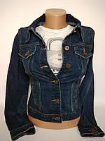 Куртка джинсовая класическая MissFree 6262