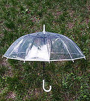 Зонт трость прозрачный с белым ободком без принта (14 спиц)