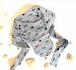 """Головной убор для малышей Бандана Ник Размер 52-54 """"Усы"""" Голубой Хлопок Бабасик Украина, фото 3"""
