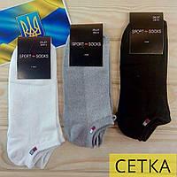 Летние мужские носки короткий сетка SPORT SOCKS  25-27р   NML-06471