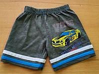 Детские шорты для мальчиков 'Машинка' на 1,2,4-5 лет