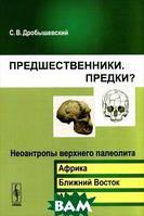 С. В. Дробышевский Предшественники. Предки? Часть 6. Неоантропы верхнего палеолита (Африка, Ближний Восток, Азия)