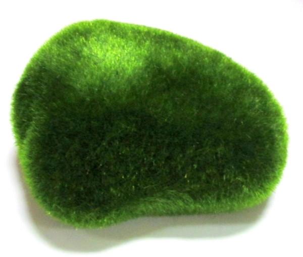 Камень искусственный мшистый 16*13 см