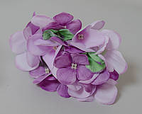 Головка цветка гортензии сиреневая 2-цветная