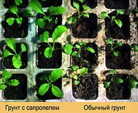 Удобрение, Сапропель, Грунт, фото 1