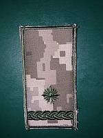 Погони майор ЗСУ ММ14 муфта та липучка