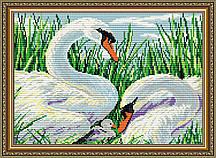 AT3011. Лебединая семья