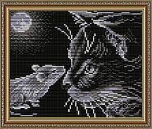 AT5511. Кошки-мышки