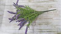 Цветы лаванды (фиолетовый)