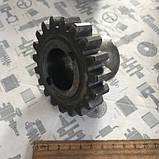 Шестерня КОМ ЗИЛ 131 (19зубов) (ВЕРХНЯЯ) (АМО ЗИЛ) (157К-4206034), фото 2