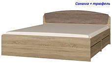 Кровать двуспальная Астория 2-мя с ящиками, фото 3