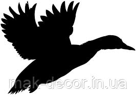 Виниловая наклейка - птица