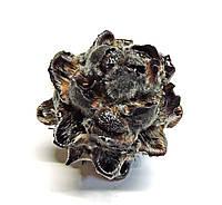 Сухоцвет Velvet Flover чёрный