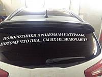 Виниловая наклейка на авто (надпись) (от 15х60 см)