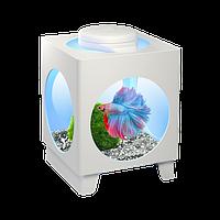 Аквариум-проектор Tetra Betta Projector для петушка, 1.8 л