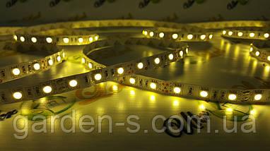 Светодиодная лента SMD5050 60d/m IP33 (WW), фото 2