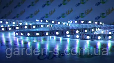 Светодиодная лента SMD5050 60d/m IP33 (RGB), фото 3