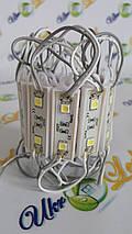 Cветодиодный модуль 5054 СW на 2 диода, фото 2