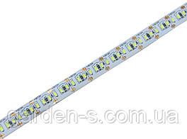 Светодиодная лента SMD4014 240d/m IP33 (CW)