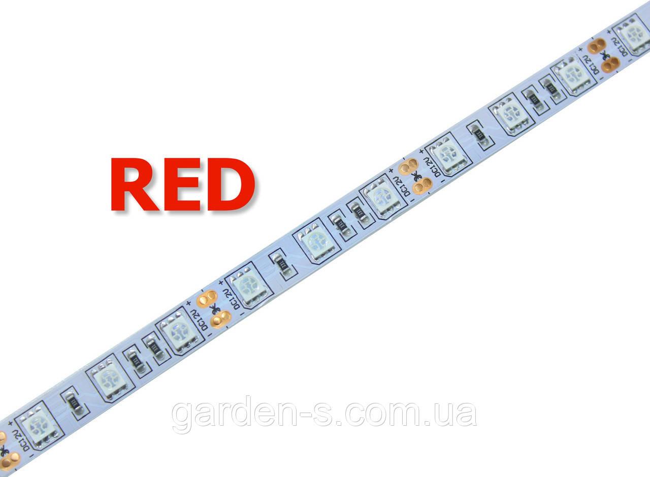 Светодиодная лента SMD5050 60d/m IP33 (Red)