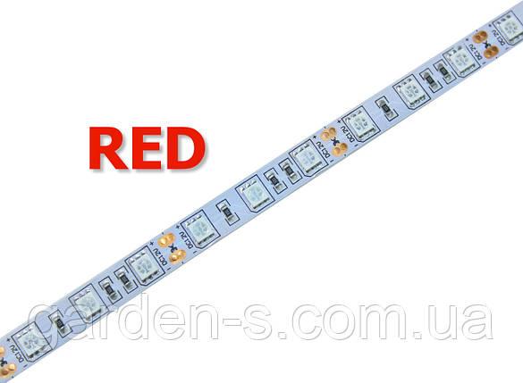 Светодиодная лента SMD5050 60d/m IP33 (Red), фото 2