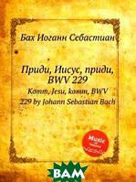 Бах Иоганн Себастьян Приди, Иисус, приди, BWV 229