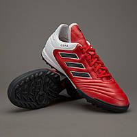 Обувь для футбола (сорокoножки) Adidas Copa 17.3 TF