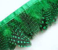 Перья цесарки Зеленые в горох декоративные на ленте 5 см/50 см, фото 1