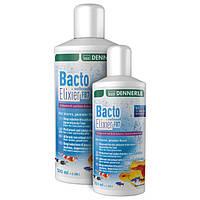 Бактерии для аквариума Dennerle Bacto Elixier FB7 500мл