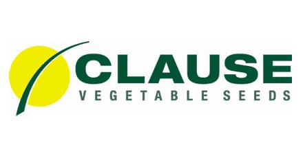 Clause семена (Клоз)